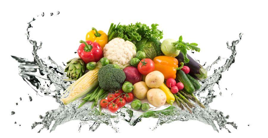 常州食品配送面临的发展问题